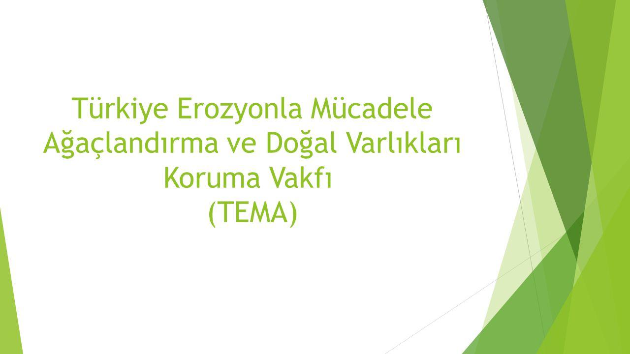 Türkiye Erozyonla Mücadele Ağaçlandırma ve Doğal Varlıkları Koruma Vakfı (TEMA)