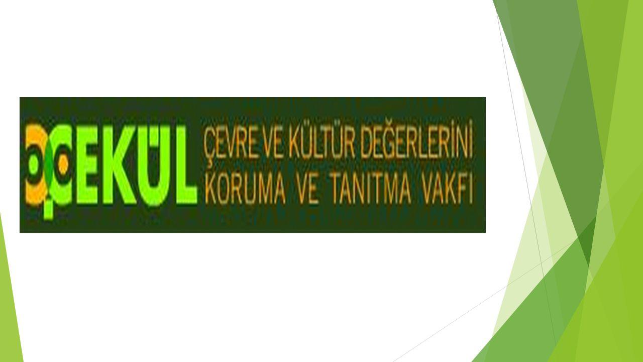 Sultan Sazlığı Araştırma Ve Yönetim Planı Projesi(1993-1995)