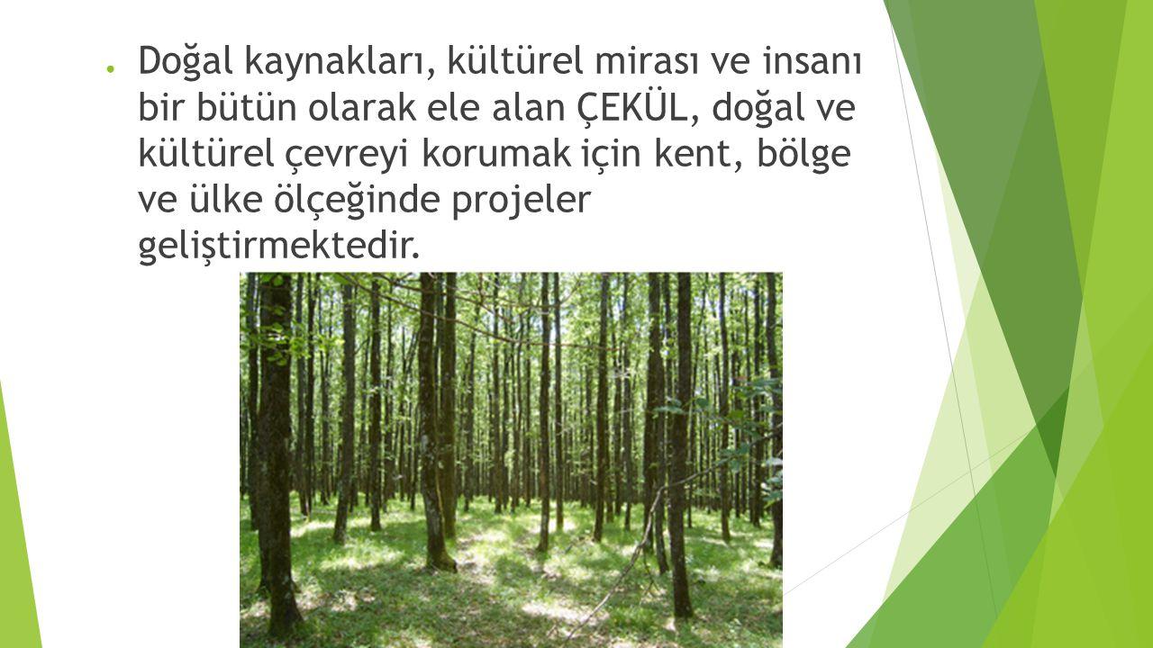 ● Doğal kaynakları, kültürel mirası ve insanı bir bütün olarak ele alan ÇEKÜL, doğal ve kültürel çevreyi korumak için kent, bölge ve ülke ölçeğinde projeler geliştirmektedir.