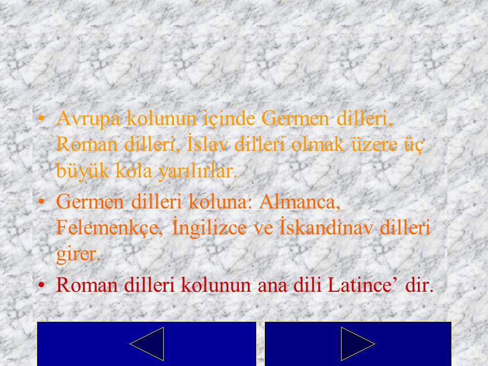 Hint-Avrupa Dil Ailesi Bu dil ailesinin içine Macarca, Fince ve diğer bazı küçük memleketlerde konuşulan diller dışında kalan bütün Avrupa dilleri ile Asya dillerinden Farsça ve Hindistan'da konuşulan diller girer.