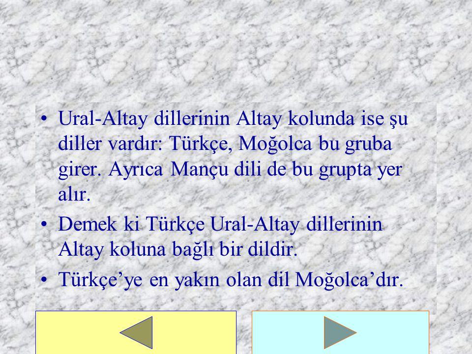 İşte başlıca özellikler bu şekilde olan Ural-Altay dilleri adından da anlaşılacağı gibi Ural ve Altay olmak üzere iki kola ayrılır.