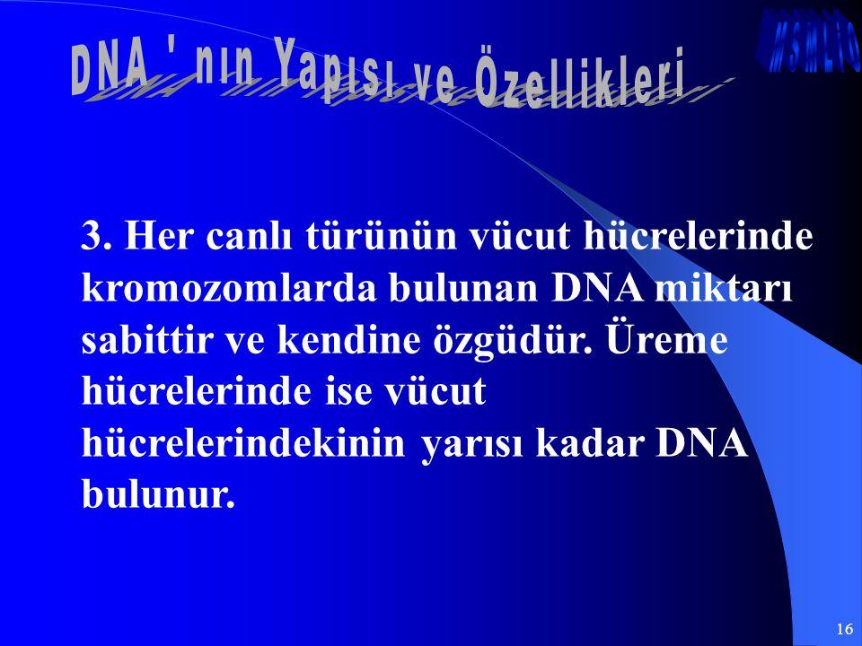 16 3. Her canlı türünün vücut hücrelerinde kromozomlarda bulunan DNA miktarı sabittir ve kendine özgüdür. Üreme hücrelerinde ise vücut hücrelerindekin