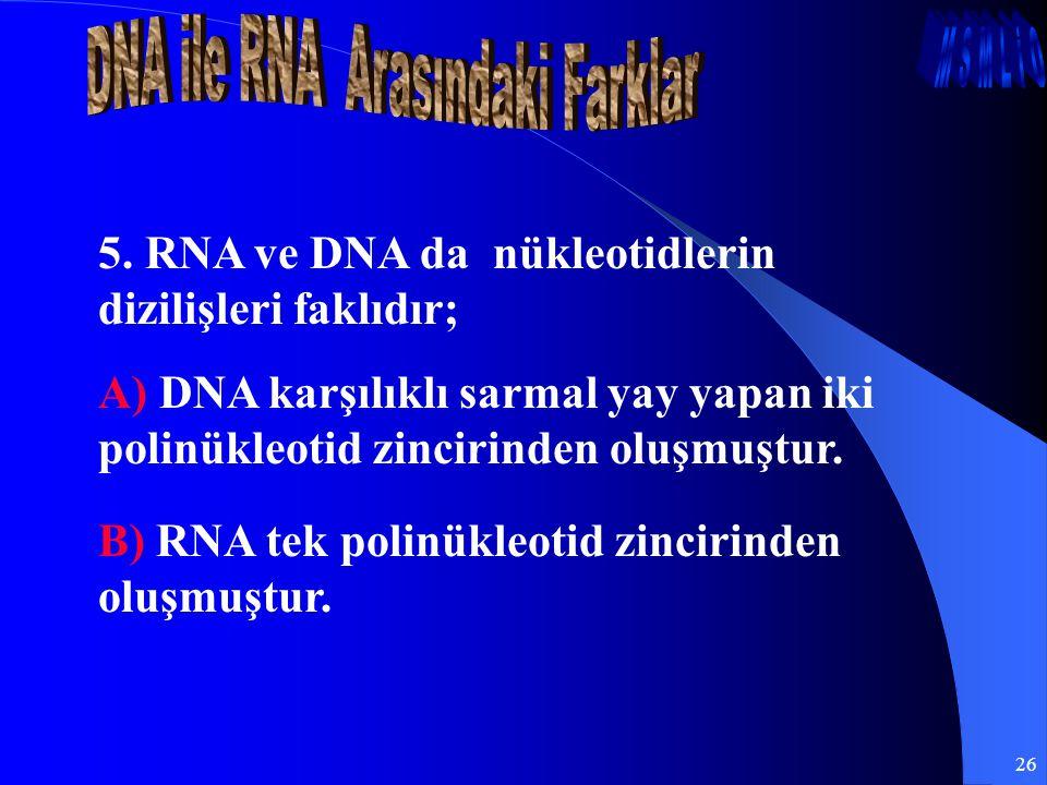 26 5. RNA ve DNA da nükleotidlerin dizilişleri faklıdır; A) DNA karşılıklı sarmal yay yapan iki polinükleotid zincirinden oluşmuştur. B) RNA tek polin
