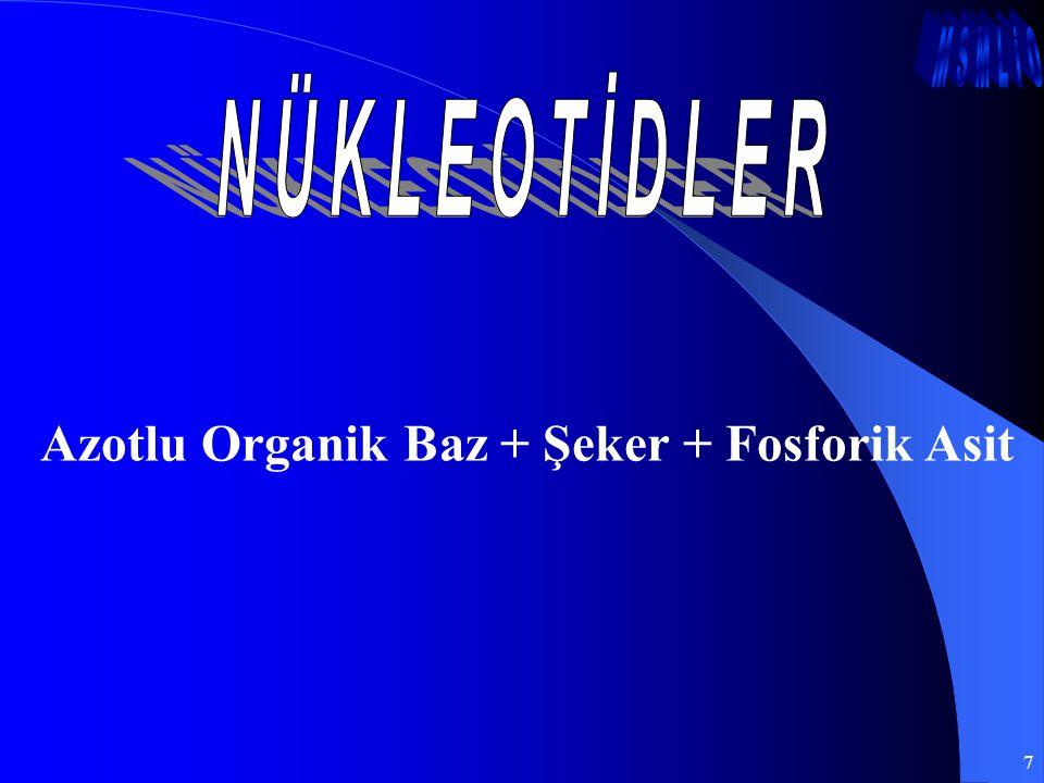 7 Azotlu Organik Baz + Şeker + Fosforik Asit
