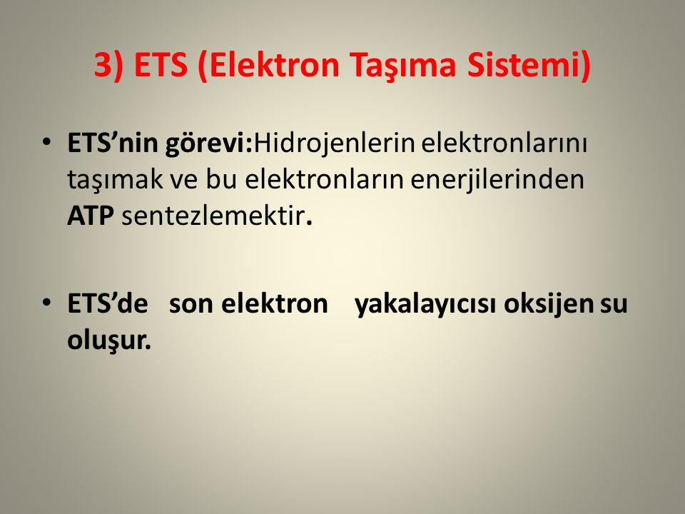 3) ETS (Elektron Taşıma Sistemi) ETS'nin görevi:Hidrojenlerin elektronlarını taşımak ve bu elektronların enerjilerinden ATP sentezlemektir. ETS'de son