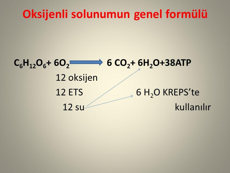 Oksijenli solunumun genel formülü C 6 H 12 O 6 + 6O 2 6 CO 2 + 6H 2 O+38ATP 12 oksijen 12 ETS 6 H 2 O KREPS'te 12 su kullanılır