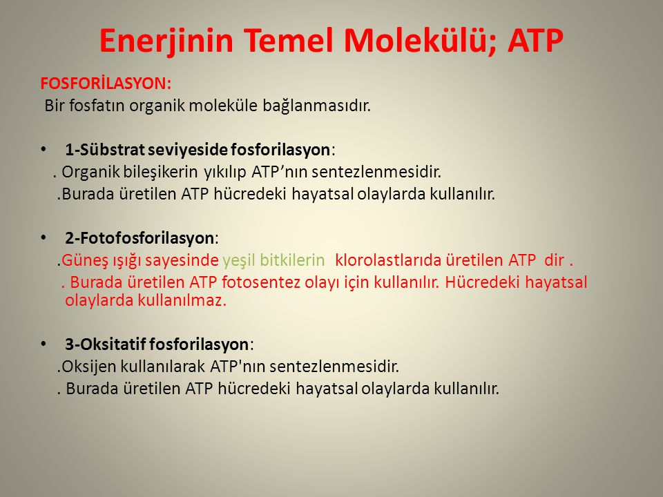 Enerjinin Temel Molekülü; ATP FOSFORİLASYON: Bir fosfatın organik moleküle bağlanmasıdır. 1-Sübstrat seviyeside fosforilasyon:. Organik bileşikerin yı