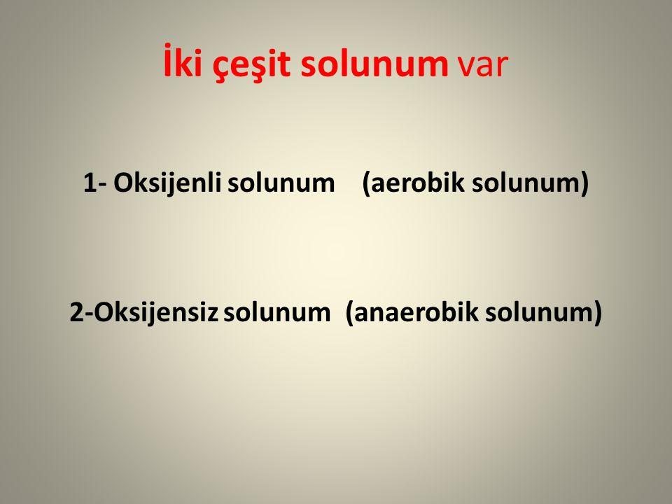 İki çeşit solunum var 1- Oksijenli solunum (aerobik solunum) 2-Oksijensiz solunum (anaerobik solunum)