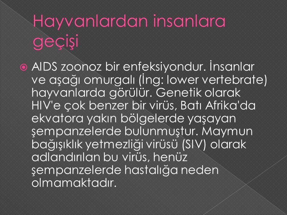  AIDS zoonoz bir enfeksiyondur. İnsanlar ve aşağı omurgalı (İng: lower vertebrate) hayvanlarda görülür. Genetik olarak HIV'e çok benzer bir virüs, Ba