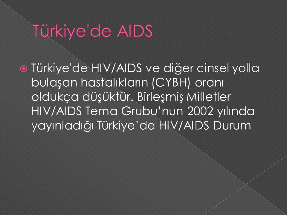  Türkiye'de HIV/AIDS ve diğer cinsel yolla bulaşan hastalıkların (CYBH) oranı oldukça düşüktür. Birleşmiş Milletler HIV/AIDS Tema Grubu'nun 2002 yılı