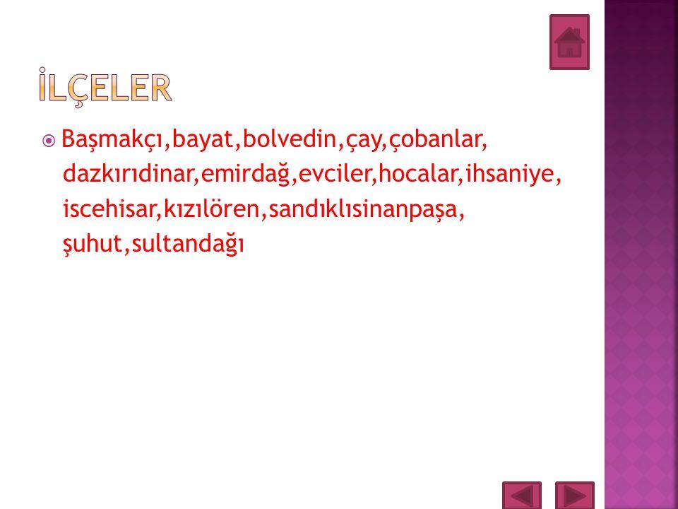  Afyonun Komşu İlleri Eskişehir, Konya, Isparta, Denizli, Uşak ve Kütahya illeridir.