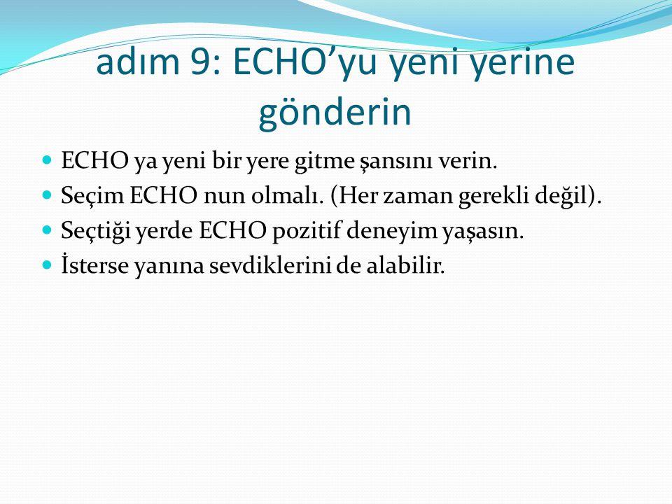 adım 9: ECHO'yu yeni yerine gönderin ECHO ya yeni bir yere gitme şansını verin.