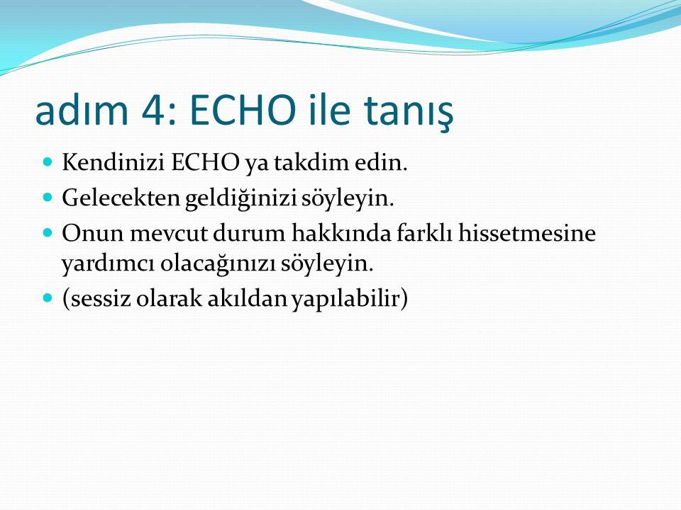 adım 4: ECHO ile tanış Kendinizi ECHO ya takdim edin.