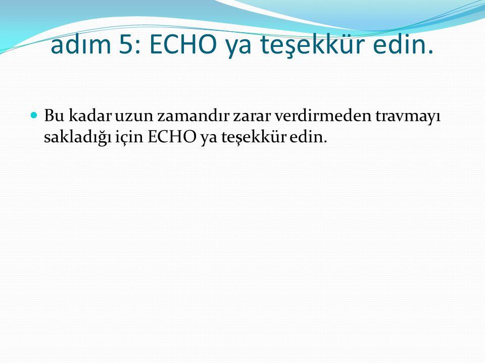 adım 5: ECHO ya teşekkür edin.