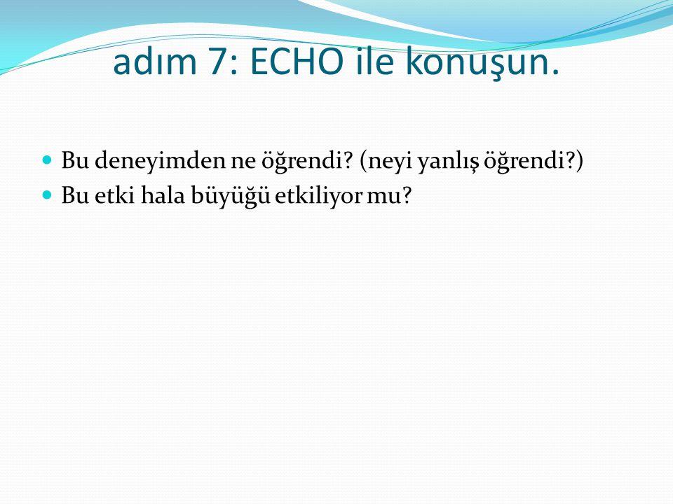 adım 8: anıyı değiştirin ECHO 'nun durumu çözmek için ek araçlara ihtiyacı var mı.