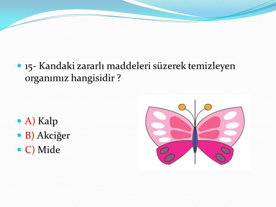 15- Kandaki zararlı maddeleri süzerek temizleyen organımız hangisidir ? A) Kalp B) Akciğer C) Mide
