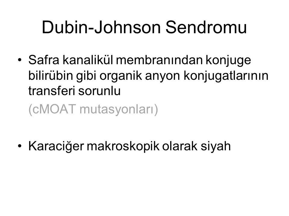 Dubin-Johnson Sendromu Safra kanalikül membranından konjuge bilirübin gibi organik anyon konjugatlarının transferi sorunlu (cMOAT mutasyonları) Karaci