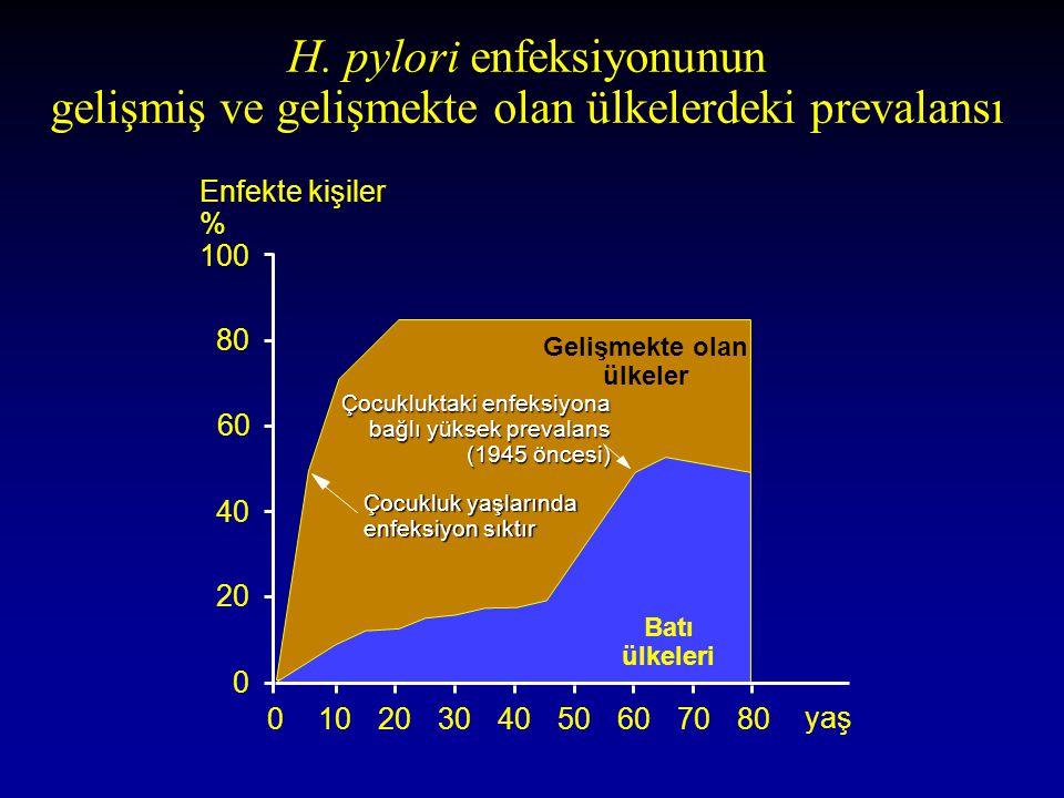 H. pylori enfeksiyonunun gelişmiş ve gelişmekte olan ülkelerdeki prevalansı 100 80 60 40 20 0 Enfekte kişiler % 01020304050607080 yaş Gelişmekte olan