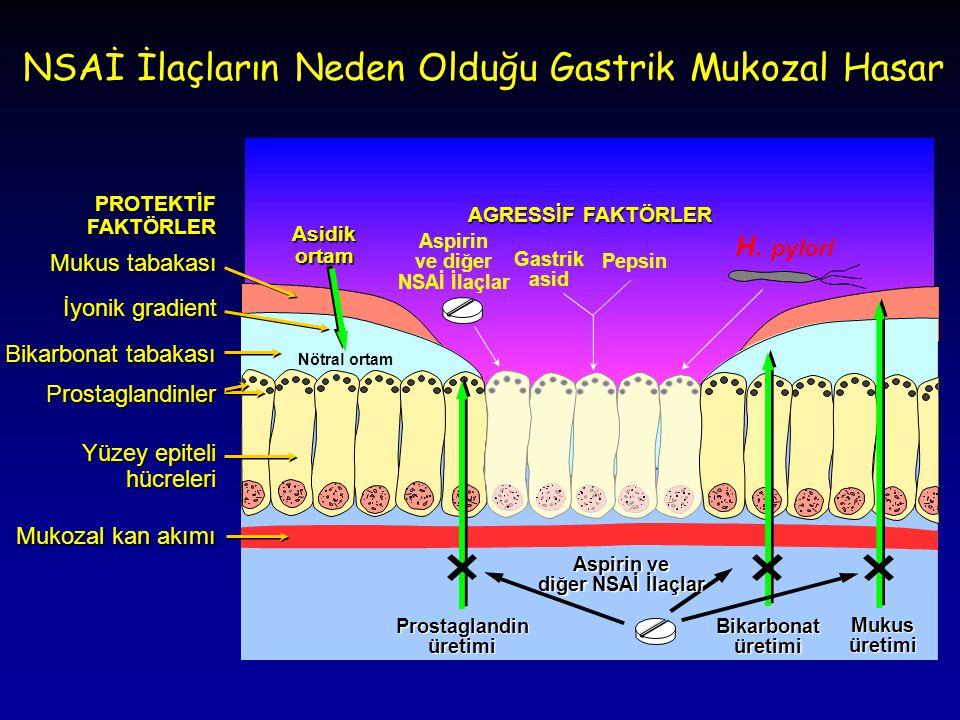 PROTEKTİF FAKTÖRLER Mukus tabakası İyonik gradient Bikarbonat tabakası Prostaglandinler Yüzey epiteli hücreleri Mukozal kan akımı Aspirin ve diğer NSA