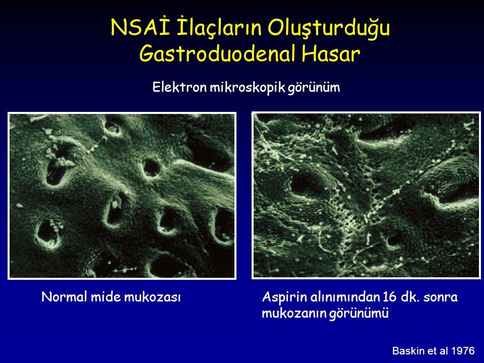 Baskin et al 1976 Normal mide mukozasıAspirin alınımından 16 dk. sonra mukozanın görünümü NSAİ İlaçların Oluşturduğu Gastroduodenal Hasar Elektron mik
