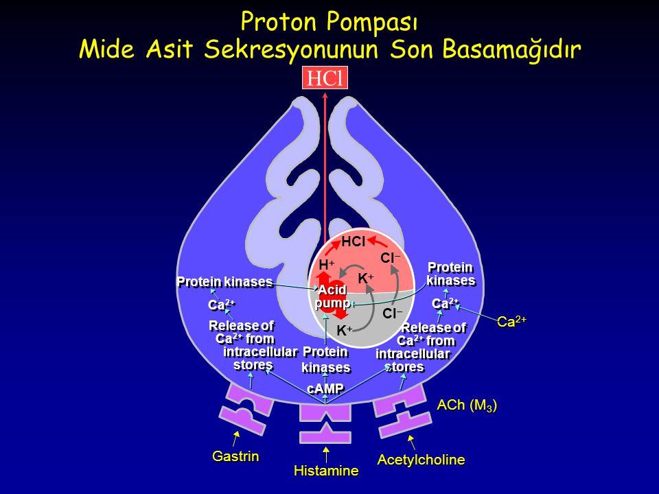 Proton Pompası Mide Asit Sekresyonunun Son Basamağıdır Gastrin Histamine Acetylcholine Ca 2+ HCl Protein kinases Ca 2+ Release of Ca 2+ from intracell