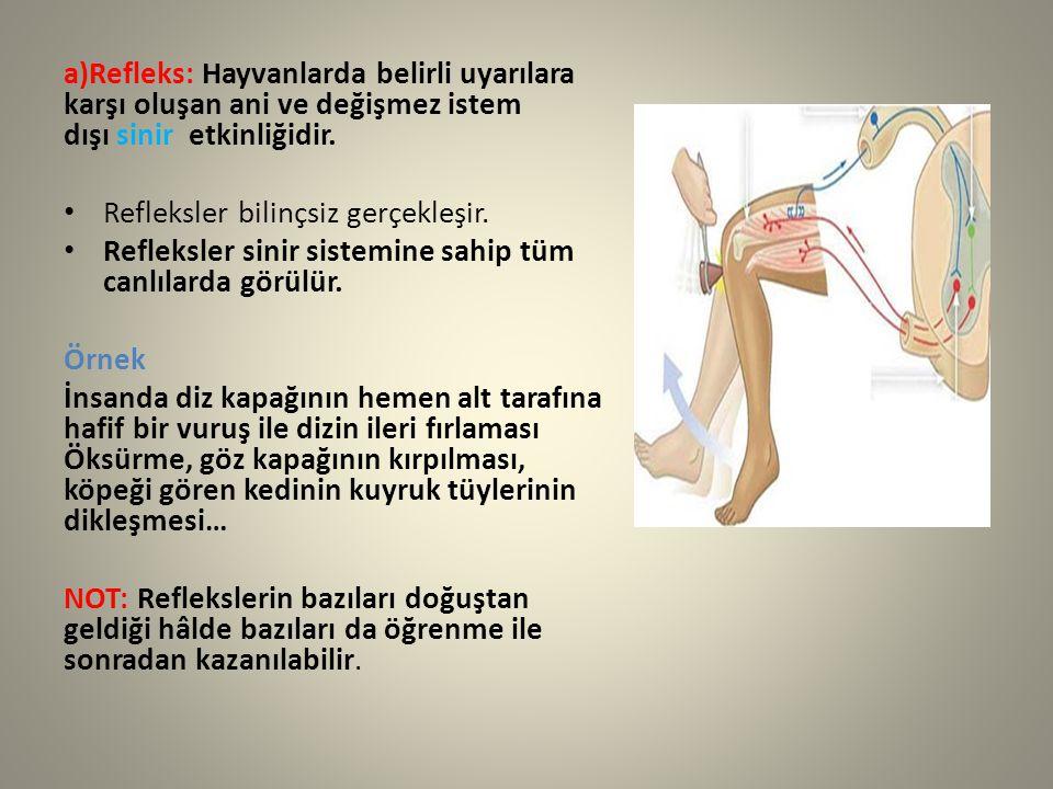 a)Refleks: Hayvanlarda belirli uyarılara karşı oluşan ani ve değişmez istem dışı sinir etkinliğidir. Refleksler bilinçsiz gerçekleşir. Refleksler sini