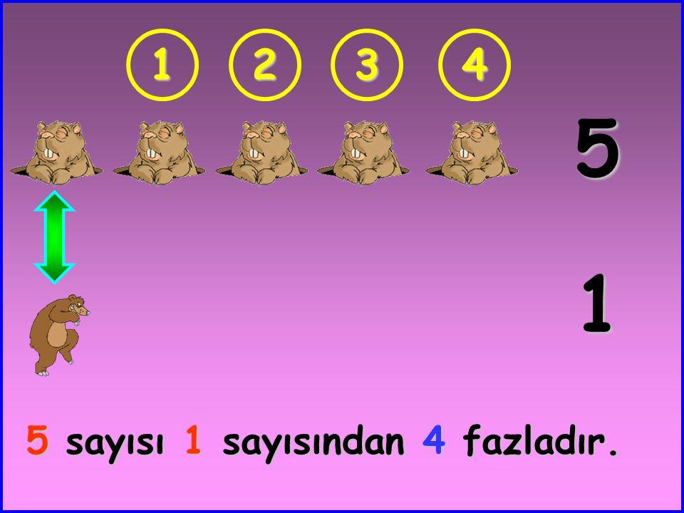 12 4 2 4 sayısı 2 sayısından 2 fazladır.