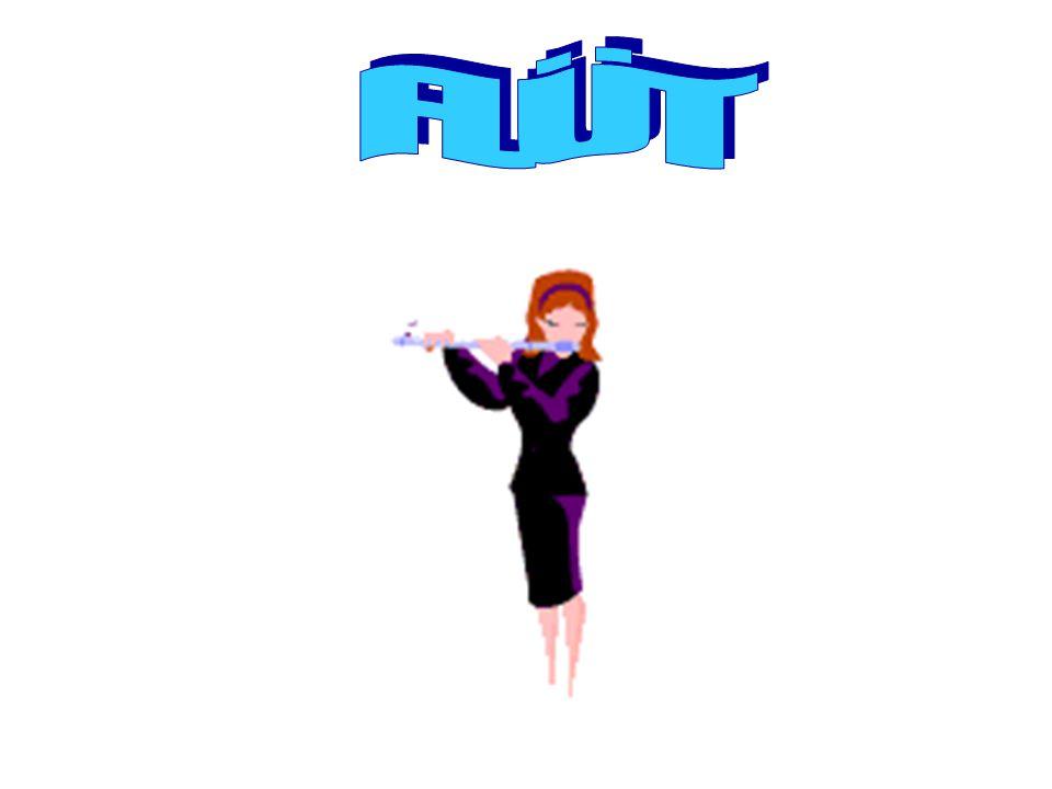 FLÜT Flüt, üç parçanın birleşiminden oluşan bir enstrümandır.