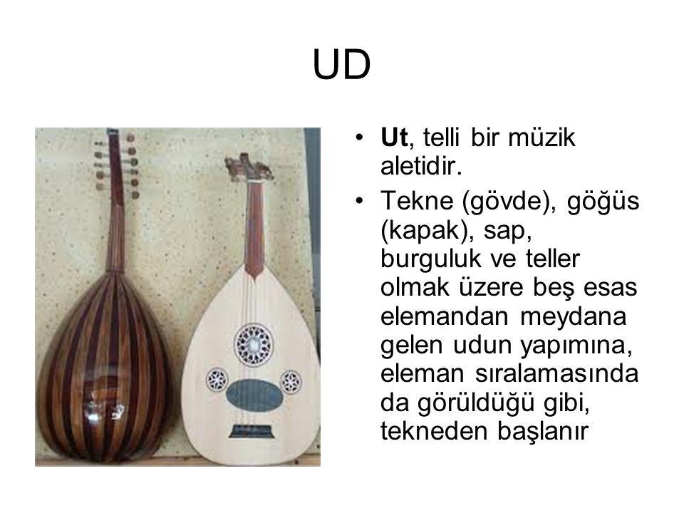 Ut, telli bir müzik aletidir. Tekne (gövde), göğüs (kapak), sap, burguluk ve teller olmak üzere beş esas elemandan meydana gelen udun yapımına, eleman