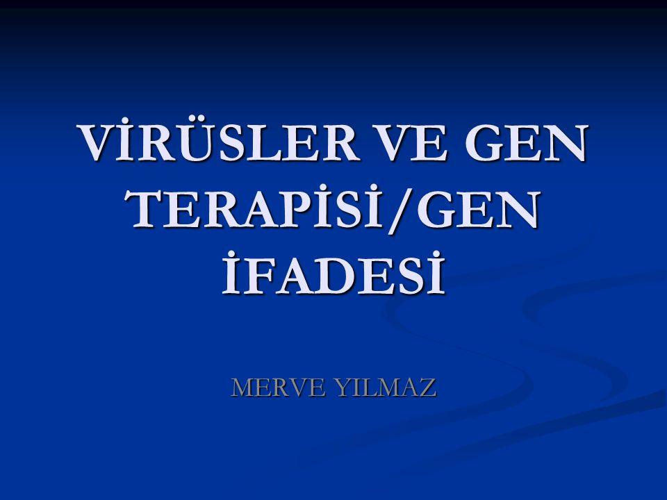 VİRÜSLER VE GEN TERAPİSİ/GEN İFADESİ MERVE YILMAZ