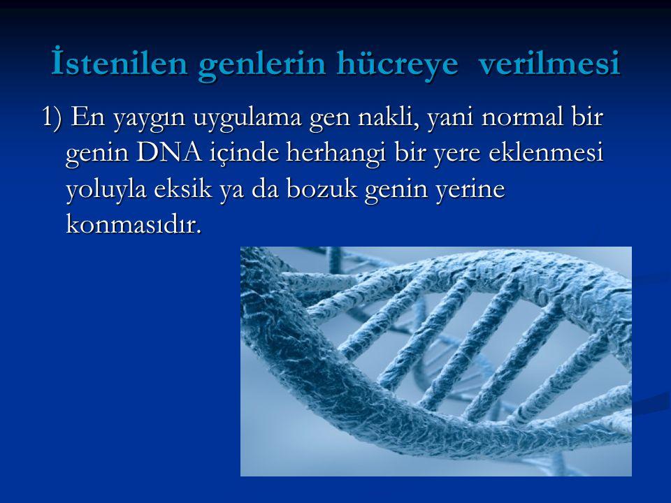 İstenilen genlerin hücreye verilmesi 1) En yaygın uygulama gen nakli, yani normal bir genin DNA içinde herhangi bir yere eklenmesi yoluyla eksik ya da