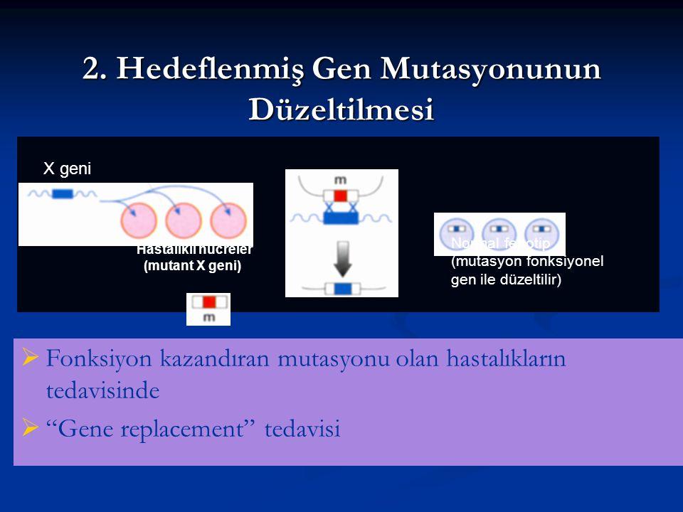 2. Hedeflenmiş Gen Mutasyonunun Düzeltilmesi X geni Hastalıklı hücreler (mutant X geni) Normal fenotip (mutasyon fonksiyonel gen ile düzeltilir)  Fon