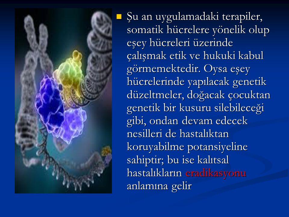 Şu an uygulamadaki terapiler, somatik hücrelere yönelik olup eşey hücreleri üzerinde çalışmak etik ve hukuki kabul görmemektedir. Oysa eşey hücrelerin