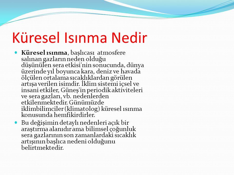 KÜRESEL ISINMA FAHRİYE LİMAN 6/A 180