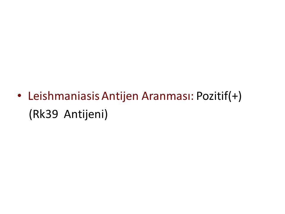 Leishmaniasis Antijen Aranması: Pozitif(+) (Rk39 Antijeni)