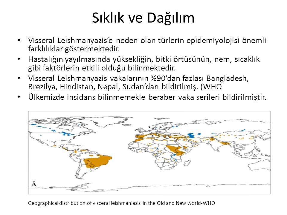 Sıklık ve Dağılım Visseral Leishmanyazis'e neden olan türlerin epidemiyolojisi önemli farklılıklar göstermektedir. Hastalığın yayılmasında yüksekliğin