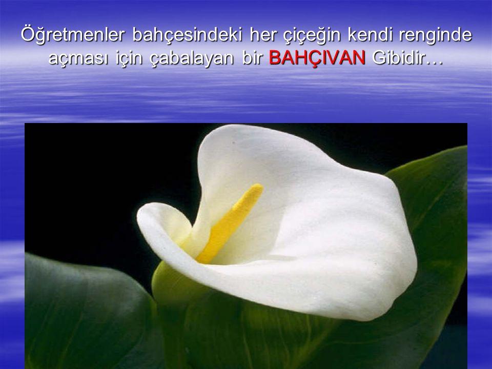 Öğretmenler bahçesindeki her çiçeğin kendi renginde açması için çabalayan bir BAHÇIVAN Gibidir…