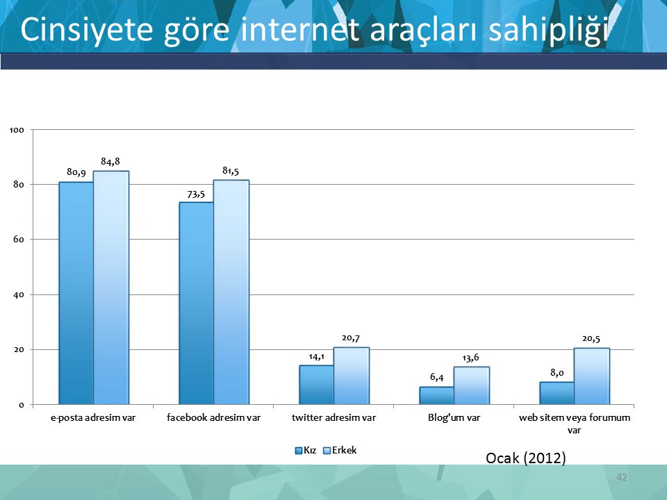 42 Cinsiyete göre internet araçları sahipliği Ocak (2012)