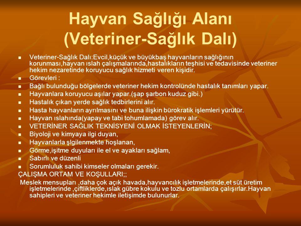 Hayvan Sağlığı Alanı (Veteriner-Sağlık Dalı) Veteriner-Sağlık Dalı:Evcil,küçük ve büyükbaş hayvanların sağlığının korunması,hayvan ıslah çalışmalarınd