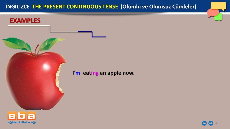 4 I'm eating an apple now. EXAMPLES İNGİLİZCE THE PRESENT CONTINUOUS TENSE (Olumlu ve Olumsuz Cümleler)