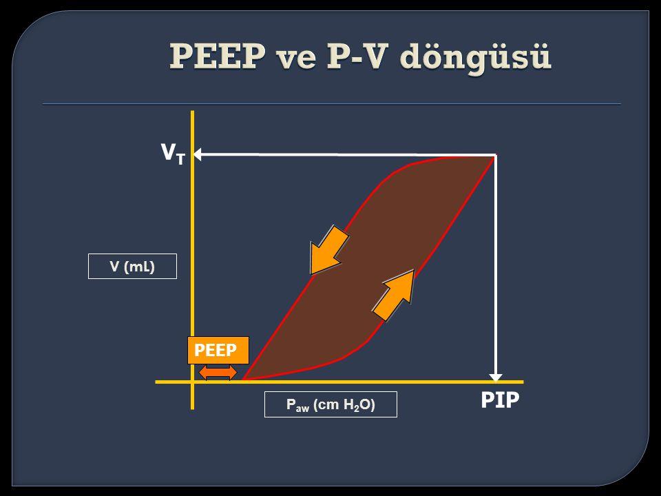 V (mL) VTVT PIP P aw (cm H 2 O) PEEP