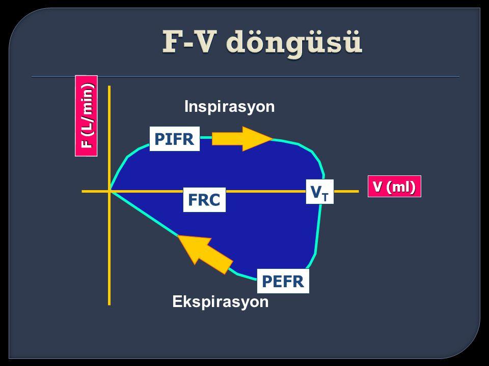 V (ml) PEFR FRC Inspirasyon Ekspirasyon F (L/min) PIFR VTVT
