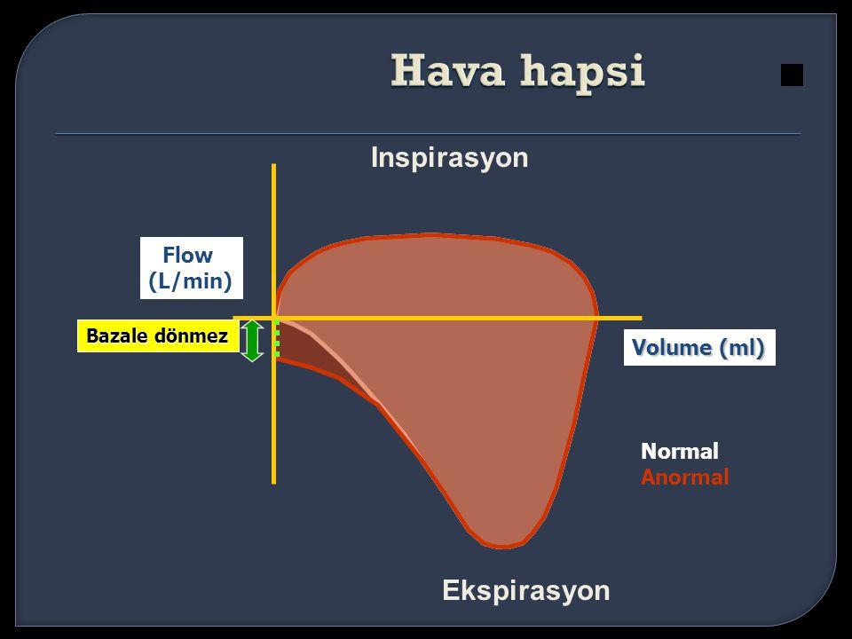 Inspirasyon Ekspirasyon Volume (ml) Flow (L/min) Bazale dönmez Normal Anormal