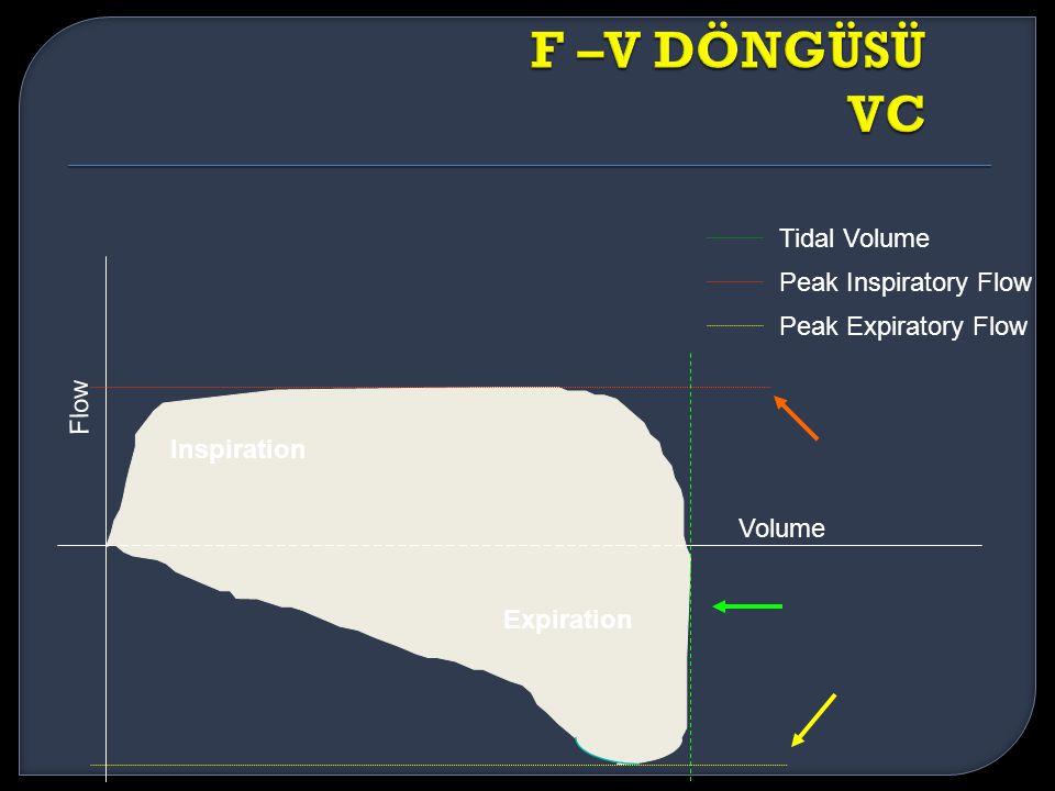 Flow Volume Peak Expiratory Flow Peak Inspiratory Flow Tidal Volume Inspiration Expiration