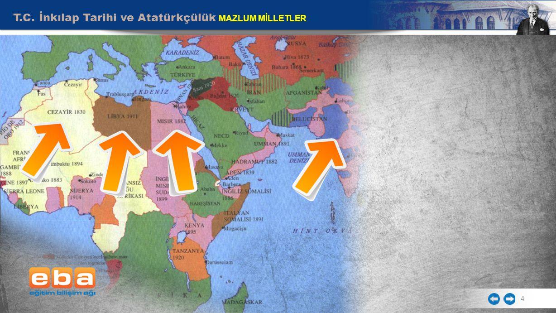 T.C. İnkılap Tarihi ve Atatürkçülük MAZLUM MİLLETLER 4