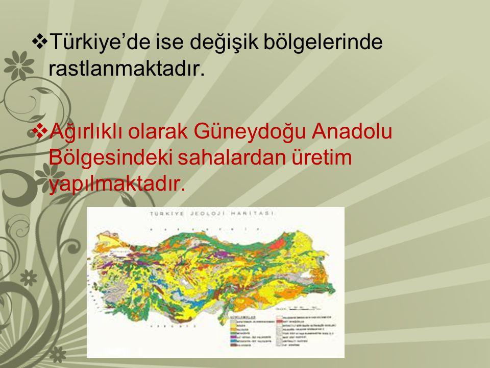  Türkiye'de ise değişik bölgelerinde rastlanmaktadır.