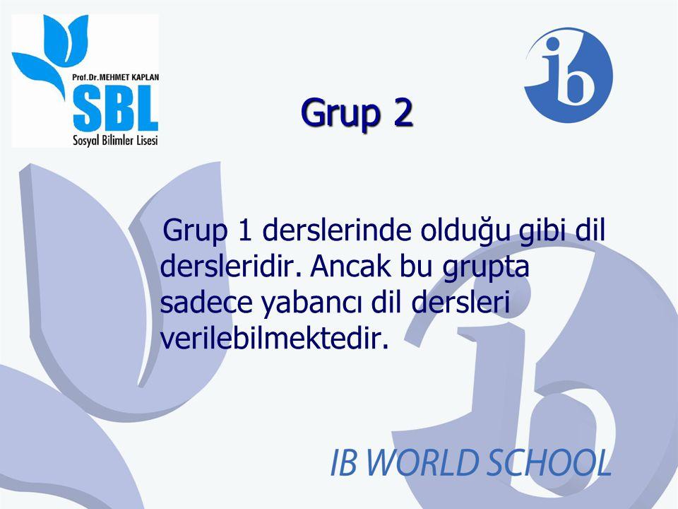 Grup 2 Grup 1 derslerinde olduğu gibi dil dersleridir. Ancak bu grupta sadece yabancı dil dersleri verilebilmektedir.