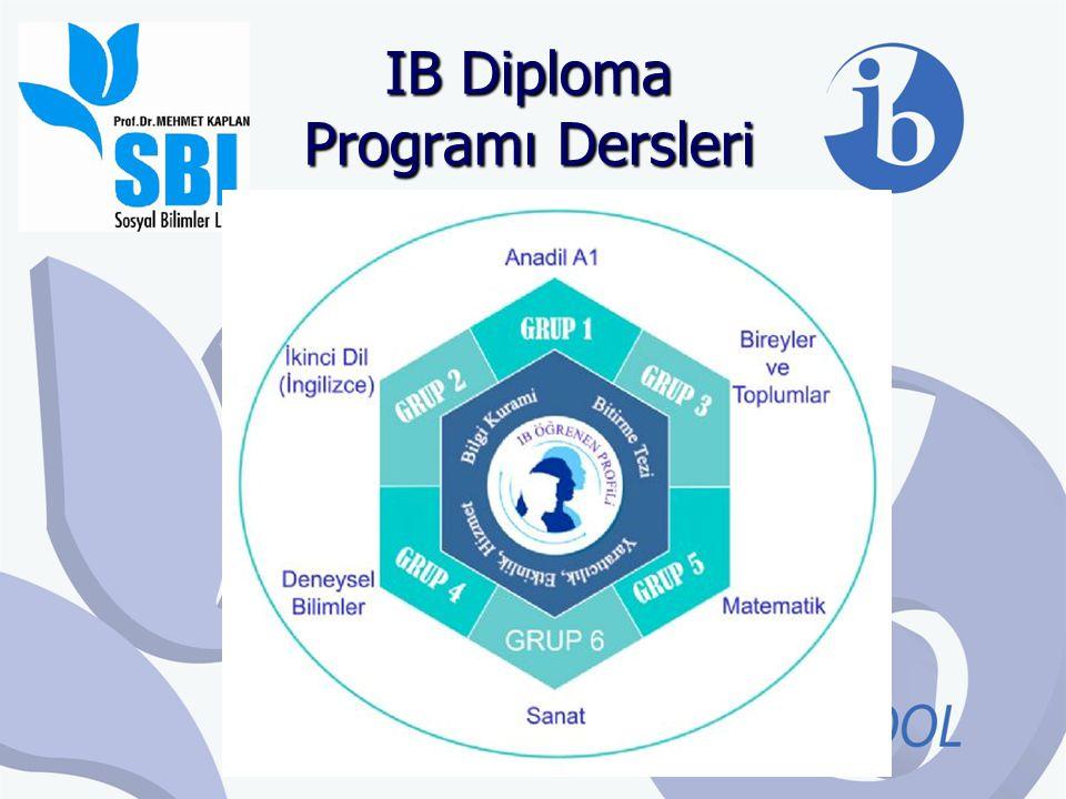 Ders Düzeyleri Dersler Yüksek Düzey (240 saat) ve Standart Düzey (150 saat) olmak üzere iki farklı düzeyde alınmaktadır.