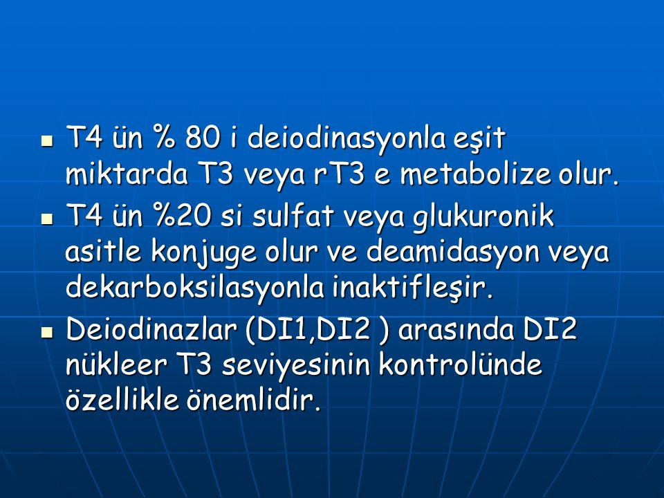 T4 ün % 80 i deiodinasyonla eşit miktarda T3 veya rT3 e metabolize olur. T4 ün % 80 i deiodinasyonla eşit miktarda T3 veya rT3 e metabolize olur. T4 ü