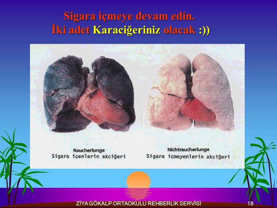 ZİYA GÖKALP ORTAOKULU REHBERLİK SERVİSİ18 Sigara içmeye devam edin.